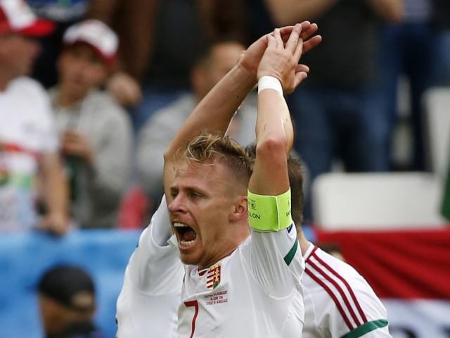 ungaria-dzudzak